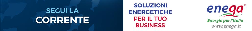 Enega Energia