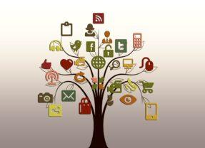 Social media: 6 consigli validi per ogni piattaforma