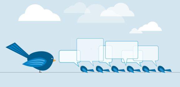 Twitter per le aziende: 5 consigli per un profilo al top!